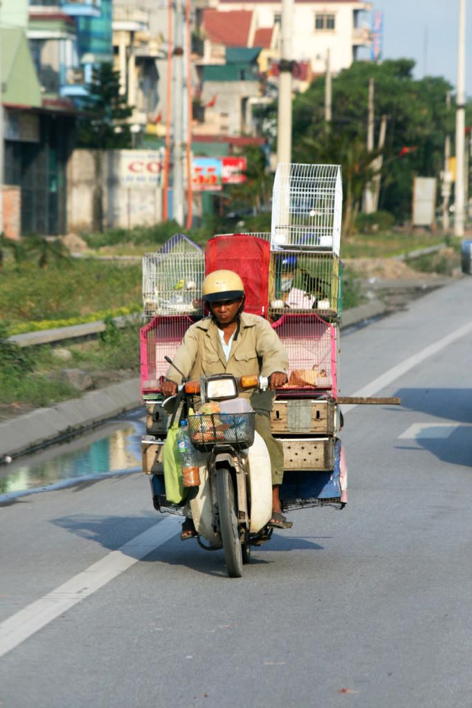 Vietnam 06 011