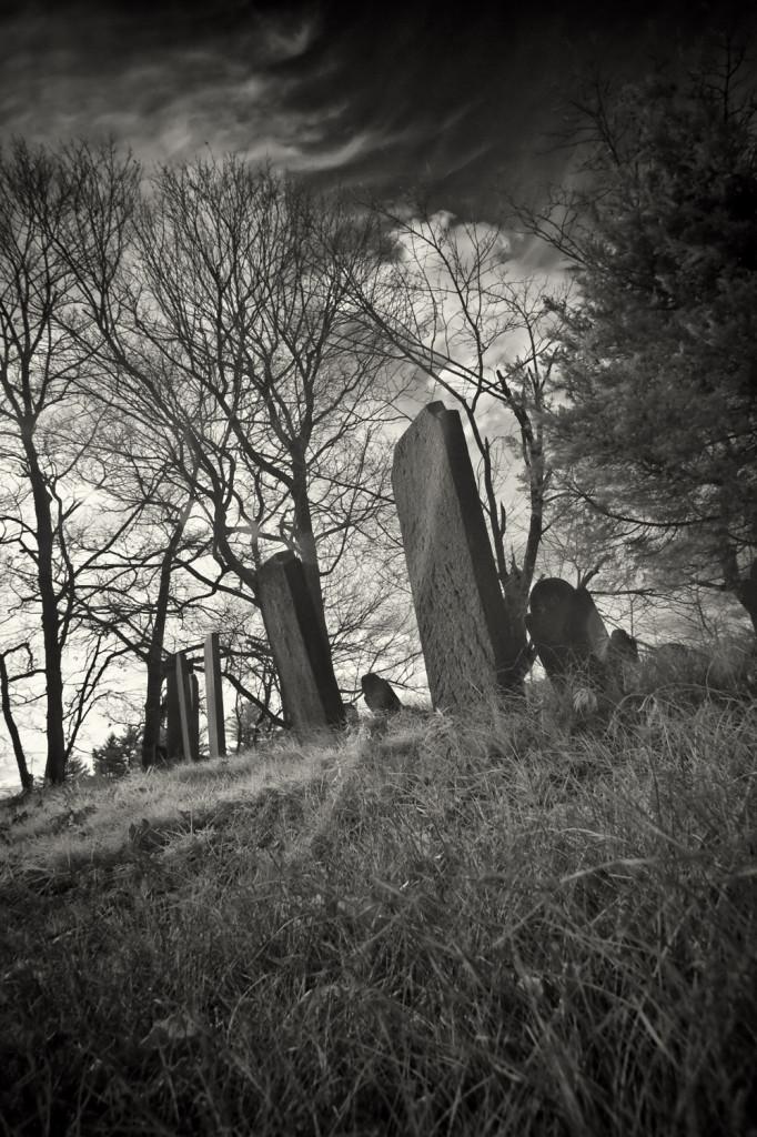 carll cemetery IR 083