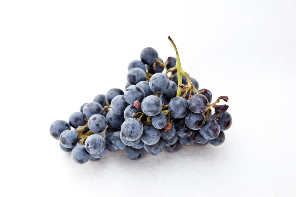 grapes 051