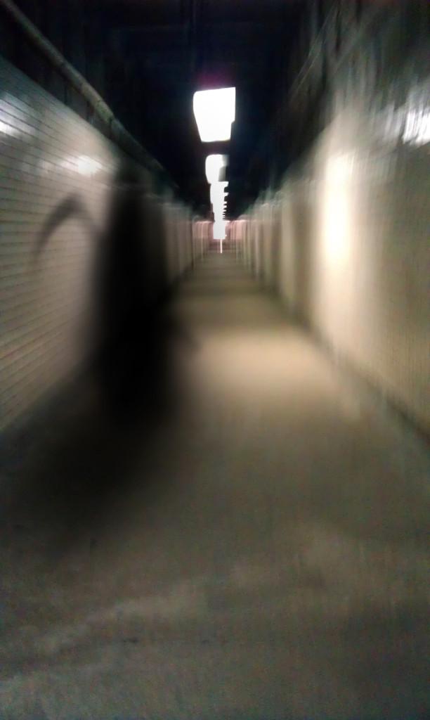 reaper 1